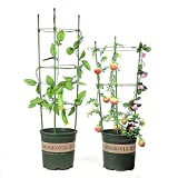 ADSRO Plant Support Ring 3 Ring 600mm Garden Plants Flower Basket Plant Fixed Climbing Gardening Plant Cage Potted Solid Vine Vines