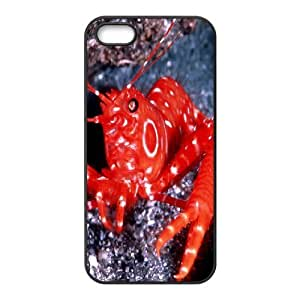 [Crab] Red Crab Case For IPhone 5,5S, IPhone 5,5S Case Unique For Girls {Black} WANGJING JINDA