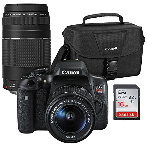 Canon EOS Rebel T6i Wi-Fi Digital SLR Camera & EF-S 18-55mm is STM & 75-300mm III Lens with 100ES Case & 16GB Card