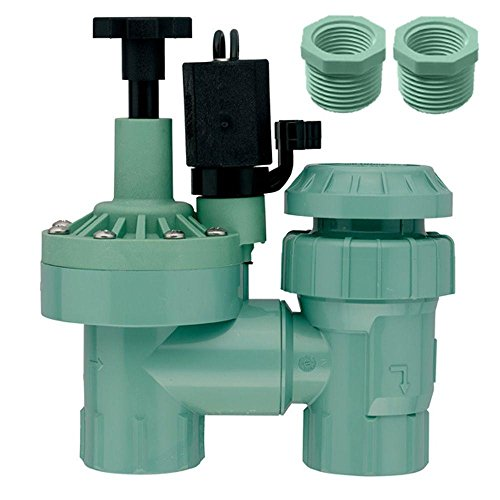 Orbit 57604 1-Inch FPT Anti-Siphon Valve with 3/4-Inch Reducer