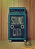 Sound City [DVD] [2013]