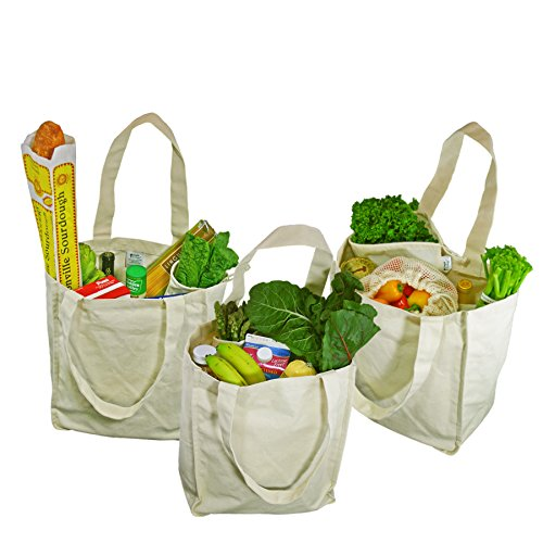City Double Stretch Flat - Simple Ecology Organic Cotton Deluxe Reusable Grocery Shopping Bag with Bottle Sleeves - Natural 3 Pack (heavy duty, washable, durable handles, foldable, craft & gift bag, 6 bottle wine bag carrier)