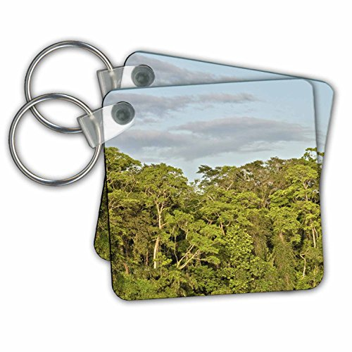 KIKE CALVO Rainforest Costa Rica Collection  - Tortuguero National Park - Key Chains - set of 2 Key Chains (kc_234120_1)