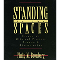Standing in the Spaces: Essays on Clinical Process Trauma and Dissociation (Essays on Clinical Process, Trauma, and Dissociation)