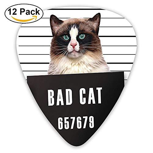- Bad Gang Cat In Jail Kitty Under Arrest Criminal Prisoner Guitar Picks 12/Pack