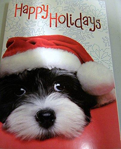 Shih Tzu Christmas Cards--12 cnt
