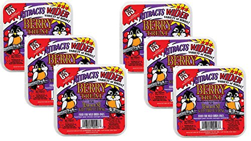 C & S 018222005277 (6 Pack) C and S Products Berry Treat Suet Cake for Wild Birds Berry Blend Suet Cake