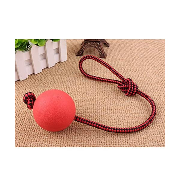 Ball and Rope Dog Toy-Dog Ball on String-Rope Rubber Solid Elastic Ball Bite-Resistant Pets Supplies Molar Training Tool for Dog Puppy 5