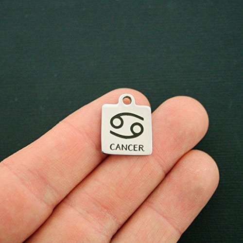(Cancer Zodiac Stainless Steel Charm - Quantity Options - WC1740 Jewelry Making Supply Pendant Bracelet DIY Crafting by Wholesale)