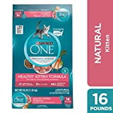 Purina ONE Natural Dry Kitten Food, Healthy Kitten - 16 lb. Bag Larger Image