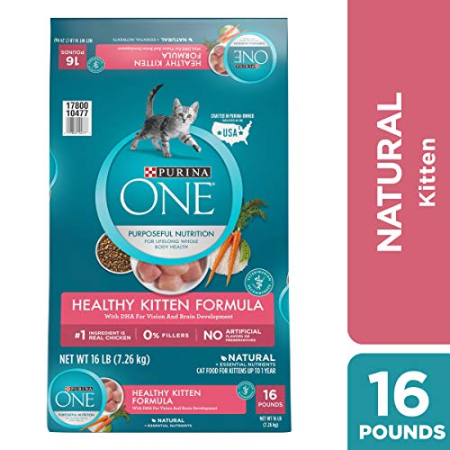 Purina ONE Natural Dry Kitten Food, Healthy Kitten - 16 lb. Bag (Best Natural Kitten Food)