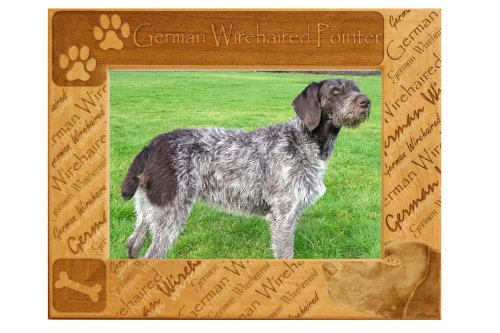 German Wirehaired Pointer: Engraved Alderwood Picture Frame # 0109L from GiftWorksPlus