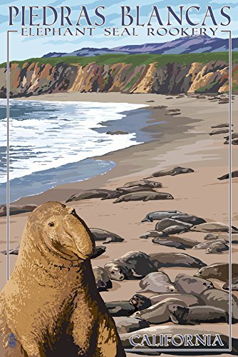 California - Piedras Blancas Elephant Seal Rookery (12x18 Art Print, Wall Decor Travel Poster)