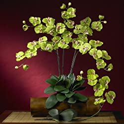 Nearly Natural 2044-GR Phalaenopsis Silk Orchid Flower with Leaves Green 6 Stems