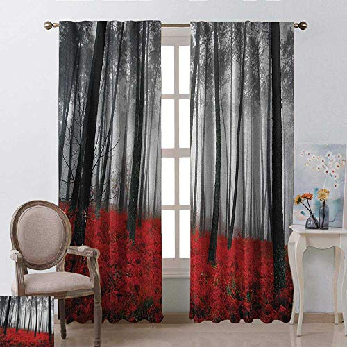 (youpinnong Forest, Curtains Thermal Insulated, Mystical Fantasy Woodland Under Heavy Fog Tall Trees Bushes Contrast Colors, Curtains for Living Room, W72 x L96 Inch, Black Red Pale Grey)