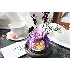 Amoleya 4.9 Inch Handmade Preserved Rose Enchanted Rose That Lasts in Glass Dome,Violet 2