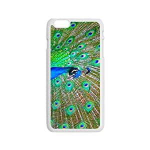 Proud as a Peacock Hight Quality Plastic Case for Iphone 6