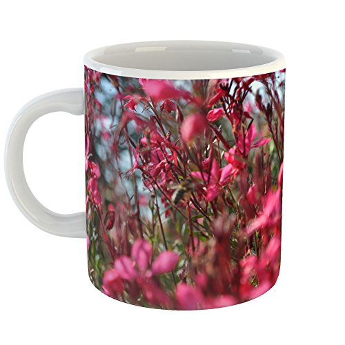 Westlake Art - Coffee Cup Mug - Meadow Prairie - Modern Picture Photography Artwork Home Office Birthday Gift - 11oz - Rose Cup Prairie