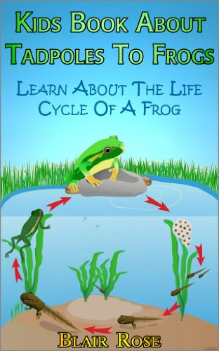 Kids Book About Tadpoles To Frogs: Learn About The Life