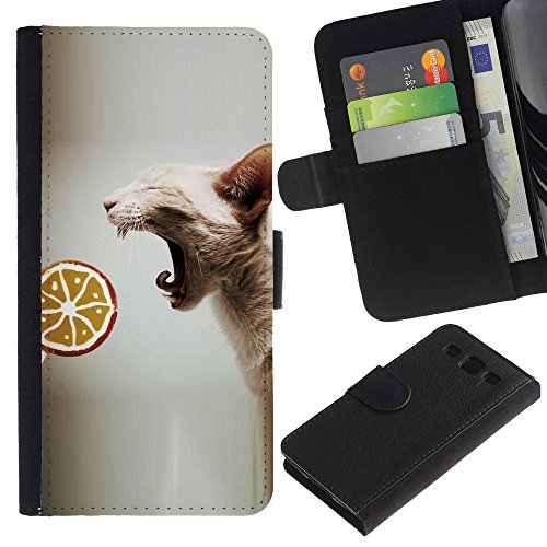 EuroCase - Samsung Galaxy S3 III I9300 - sphynx oriental cat skinless breed lollipop - Cuero PU Delgado caso cubierta Shell Armor Funda Case Cover