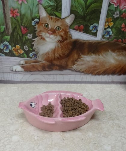 Pet bowl ceramic double cat feeder pink fish shape 80562 for Fish bowl pets