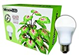 Miracle LED Almost Free Energy 150W Commercial Hydroponic Ultra Grow Lite - Daylight White Full Spectrum LED Indoor Plant Growing Light Bulb For DIY Horticulture & Indoor Gardening (604297)Single Pack