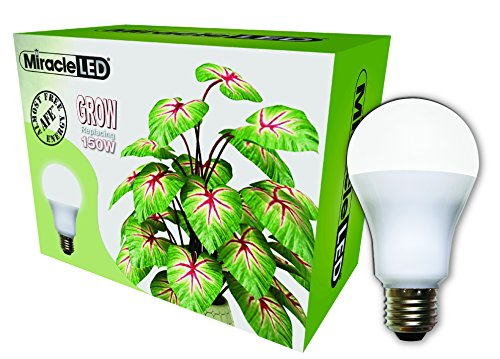 Miracle LED Almost Free Energy 150W Commercial Hydroponic Ultra Grow Lite - Daylight White Full Spectrum LED Indoor Plant Growing Light Bulb For DIY Horticulture & Indoor Gardening (604297)Single Pack by MiracleLED