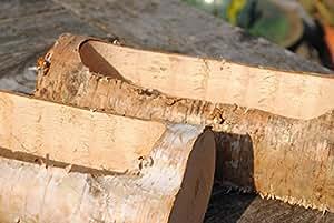 Madera de Abedul tronco ausgefräst como maceta. Longitud 30cm
