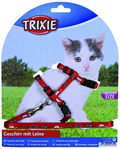 Arnés y Plomo Set para gatitos de SM gatos collar (color puede variar)