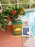 Growmanji Solar Powered Hydroponic System DWC, Complete Gardening Kit, Nutrients, solar powered aerator, germination cubes and tray included. Grow Vegetables,Herbs, Flowers Soil Free.Grow anything!