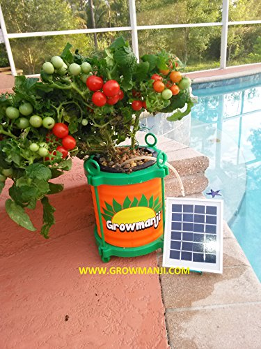 Solar Hydroponic Lights in Florida - 5