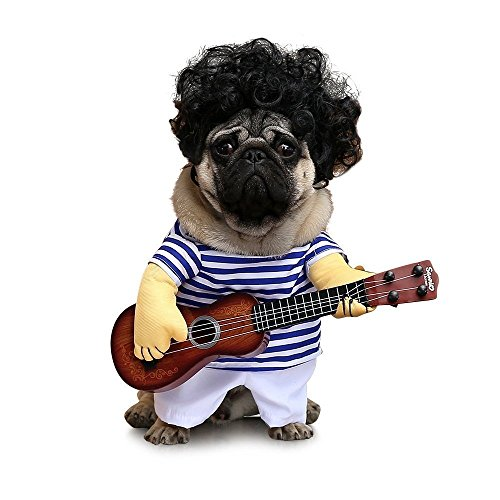 Fat Dogs In Costumes (OSPet Funny Dog Cat Costume Cute Guitarist Cosplay, Adorable Super band in Halloween Party)
