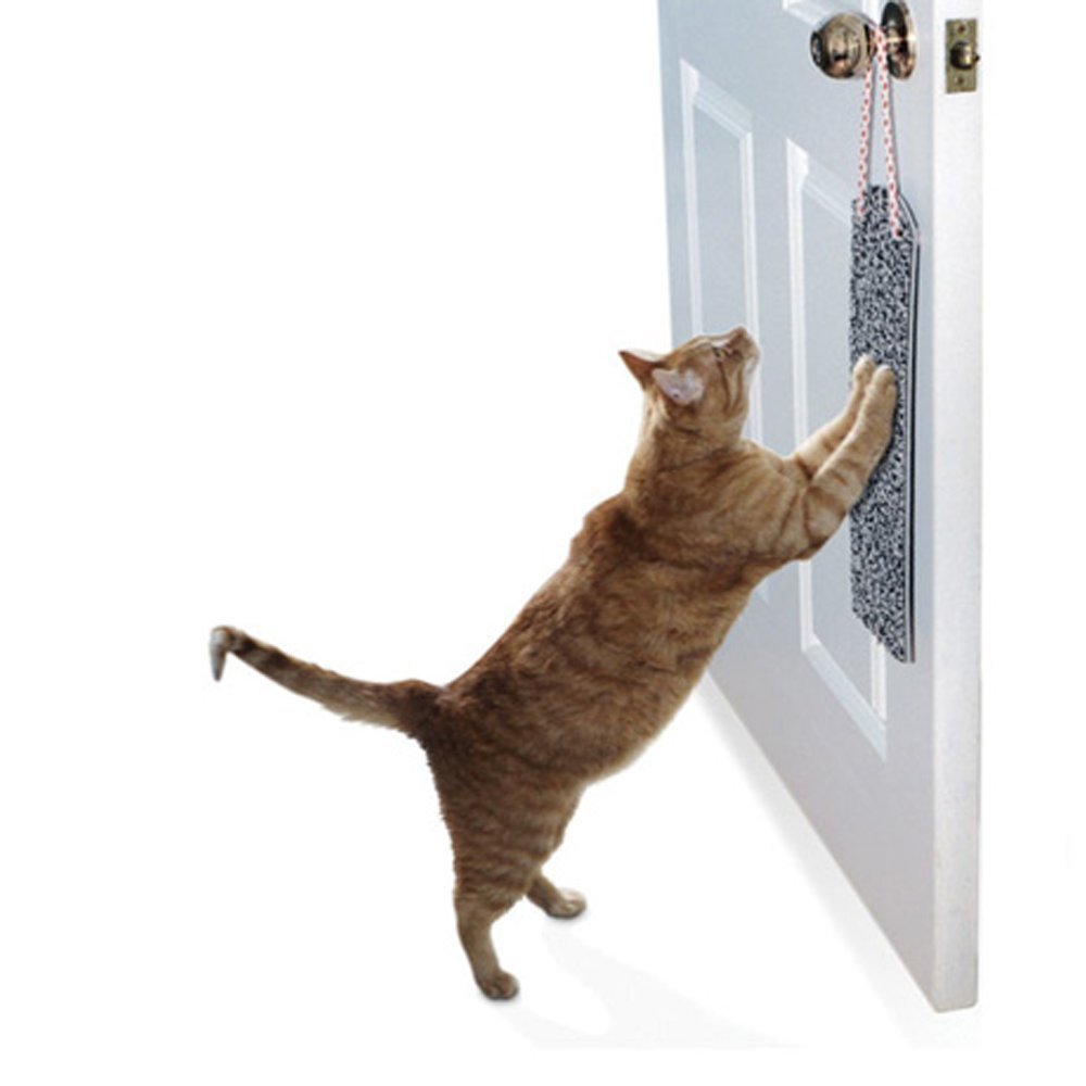 Amazon.com : Omega Paw SP Door Hanging Scratch Pad - Assorted Colors : Scratcher Cat : Pet Supplies