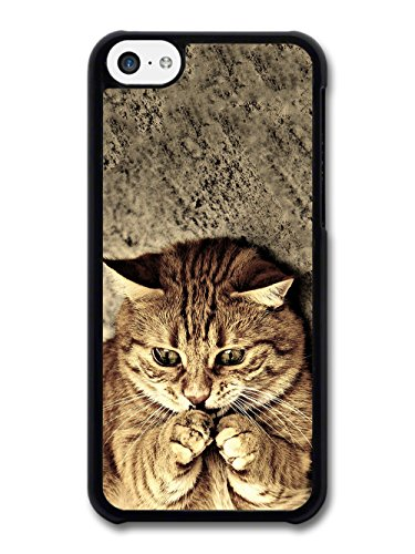 Cool Cute Funny Cat Meme Animal Nature case for iPhone 5C