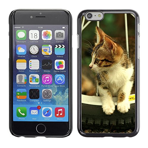 "Premio Sottile Slim Cassa Custodia Case Cover Shell // V00003504 chaton // Apple iPhone 6 6S 6G 4.7"""