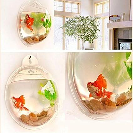 Buy 3 Size Transparent Acrylic Wall Plants Hanging Wall Aquarium