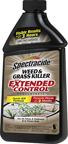 Spectracide 95963 Weed and Grass Killer with Extended Control Concentrate, 32-Ounce, Pack of 1 (Spectracide Weed And Grass Killer)