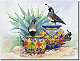 Garden Lookout by Susan Libby - Southwest Birds Ceramic Tile Mural 12.75'' x 17'' Kitchen Shower Backsplash