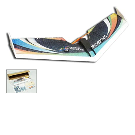 Amazon com: DW Hobby 3CH EPP Electric Micro Flying Wing