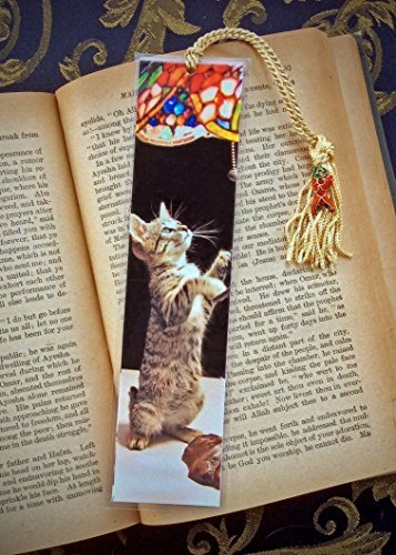Playful Daisy Tabby Kitty Cat Kitten Photo Bookmark w/ Cloisonne Fish Beads Fine Art Photography Photo Laminated Handmade Bookmark
