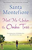 img - for Meet Me Under the Ombu Tree book / textbook / text book