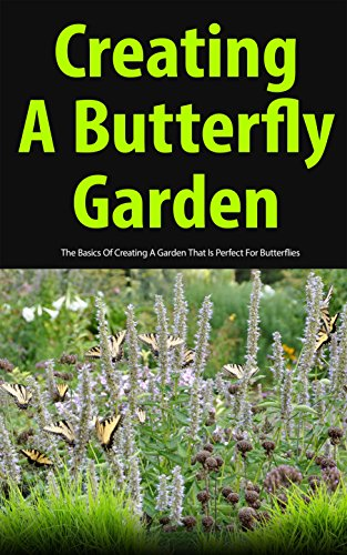 Creating A Butterfly Garden: The Basics Of Creating A Garden That Is  Perfect For Butterflies