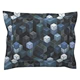Roostery Steampunk Euro Flanged Pillow Sham Steamcubism - Steel by Bonnie Phantasm Natural Cotton Sateen Made