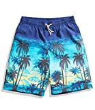 SHENGRUI Men's Swim Trunks Quick Dry Printed Bathing Suits for Men 34/Tag Asia XL