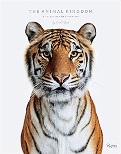 Buy The Animal Kingdon - A Collection of Portraits by Randal Ford