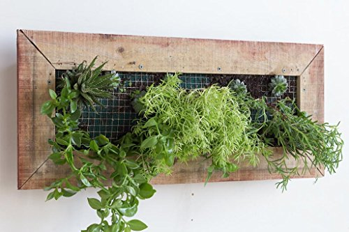 Planter Box - Wooden - Wall Mounted - Rectangular - Vertical Garden by Fabian Woodworks
