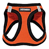 Voyager Step-in Air Dog Harness - All Weather Mesh, Step in Vest Harness for Small and Medium Dogs by Best Pet Supplies, Orange Base, M
