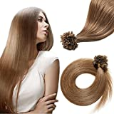 Cheap Superior Salon Quality—100 Strands 18'' U Tip Remy Virgin Human Hair Extension Pre Bonded Italian keratin Nail Tips—Chestnut Brown #6, 50g
