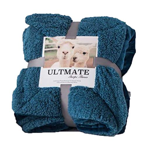 L.HPT Double-Sided Blanket Flannel Autumn and Winter Warm Blanket Thickening Does not Remove Hair Does not deform not Fade Single Single Baby Child Home ()