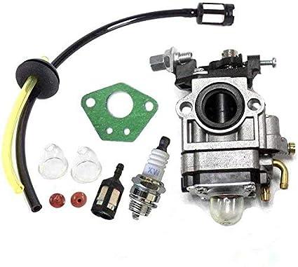 Queta para carburador para Motor de desbrozadora 52 CC 49 CC 43 CC, Kit Carbu con Junta, Tubo, Bujía y Filtro de Gasolina: Amazon.es: Coche y moto